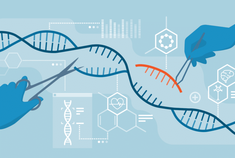 Human Genome Editing: Barrier to Human Rights